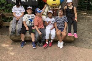 Einhörner im Zoo